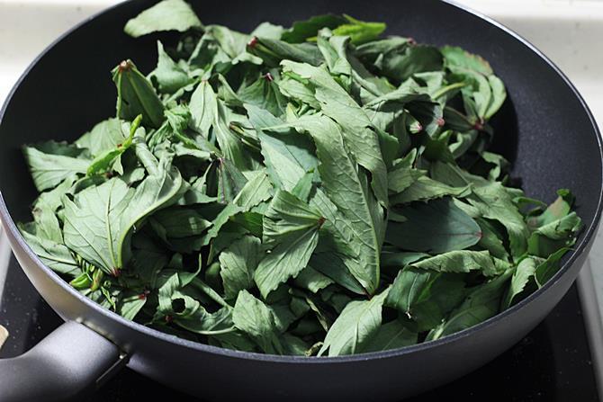 adding wilted leaves to make gongura pachadi 3