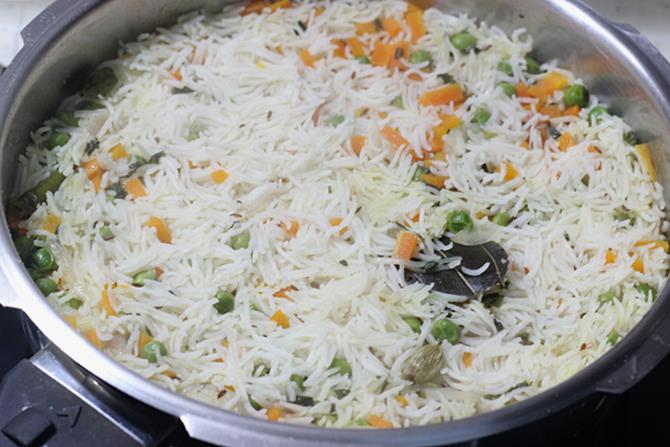 fluffed and garnished paneer pulao