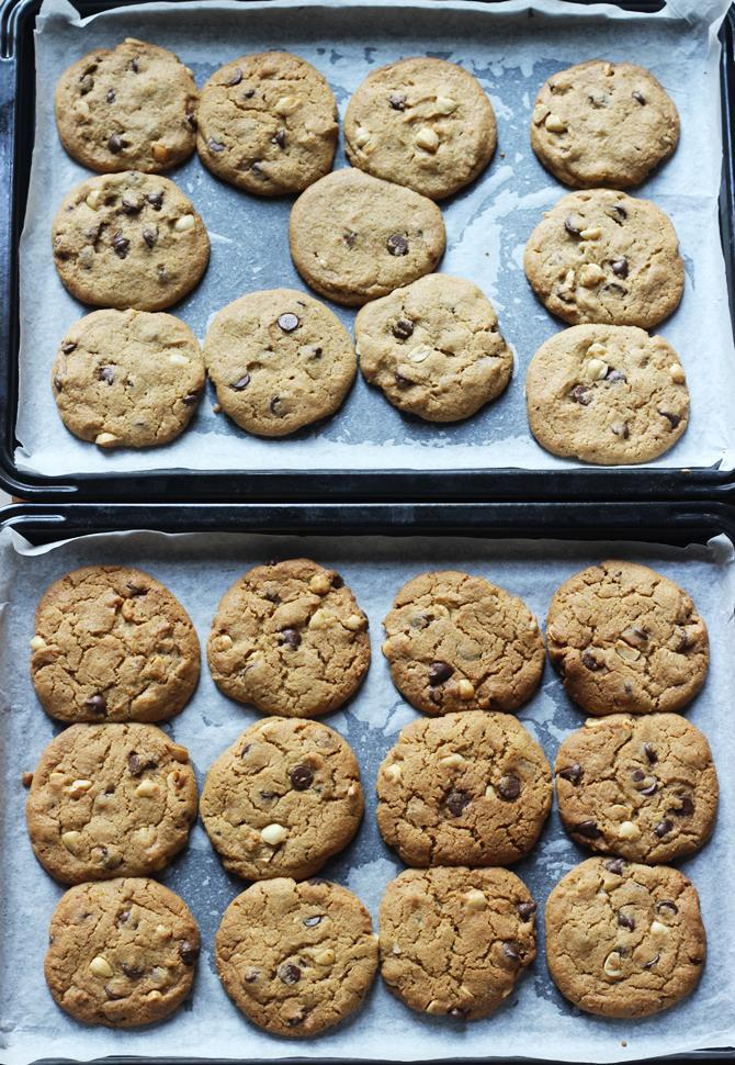 chocolate chip cookies 11