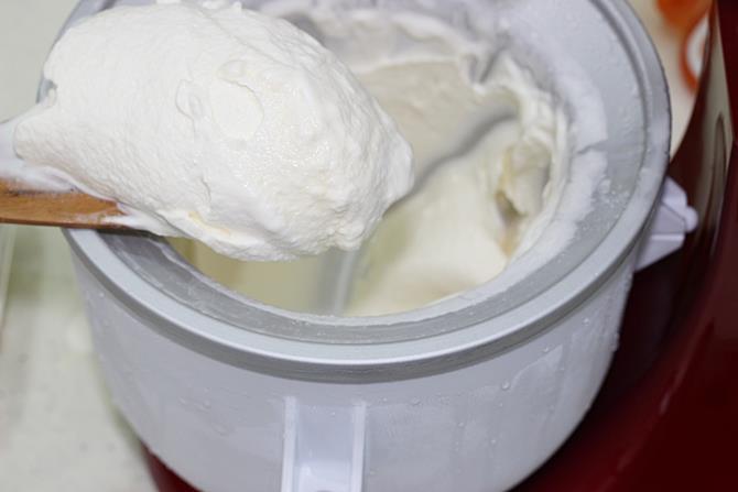 vanilla ice cream recipe 07