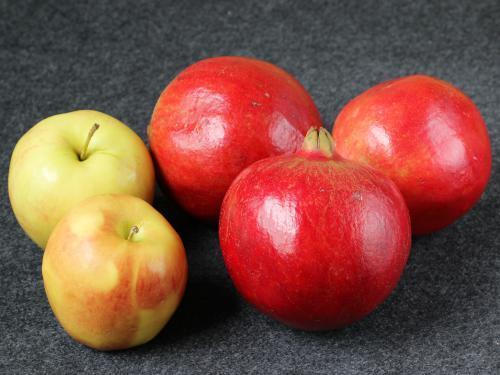 apples & pomegranate